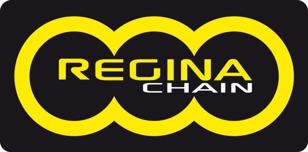 Il successo di Regina nasce da una lunga storia di dedizione e continuo impegno verso il continuo progresso e l'innovazione, alla ricerca di orizzonti sempre nuovi per massimizzare l'efficacia e l'affidabilità delle nostre soluzioni nel mondo del Motocross e dell'euduro. Fondata nel 1919, Regina è ancora di proprietà della stessa famiglia da 4 generazioni.